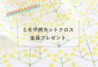nunocoto fabricミモザの花束生地プレゼント